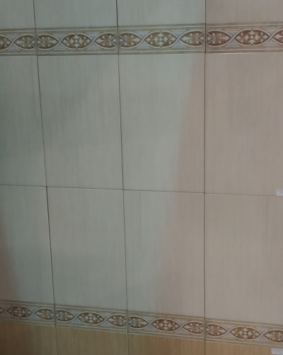 Πλακάκι μπάνιου Neva bone 25x40